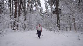 Holz Tageswinterwald die ältere Frau auf Weg Gealtert nimmt an der Gesundheit teil Der Pensionär bildet a fas aus stock footage