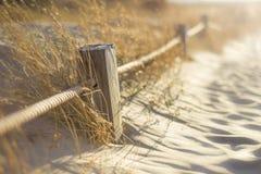 Holz und fängt sonnigen Sommer ein Lizenzfreies Stockbild