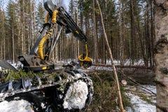 Holz- und Forstwirtschaft Blockwinde schneidet Baum im Winterwald Lizenzfreie Stockfotos