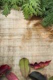 Holz- und Tannenzweighintergrund Stockbilder