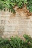 Holz- und Tannenzweighintergrund Lizenzfreies Stockfoto