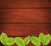Holz verlässt Hintergrund lizenzfreie stockbilder