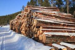 Holz verringert im ivalo Lappland Stockbild