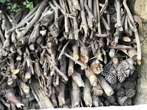 Holz von Lizenzfreie Stockfotografie