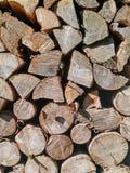 Holz zeichnet Beschaffenheit auf Lizenzfreie Stockbilder