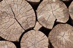 Holz zeichnet Hintergrund, Beschaffenheit auf Stockbild