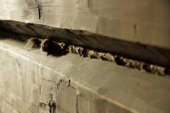 Holzbalken Altes Haus die Sprünge werden mit Schleppseil bedeckt als buil stockfoto