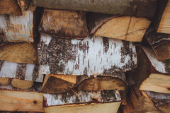 Holzbalkenbirke Stockfotos