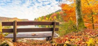 Holzbank in einer Herbstlandschaft Lizenzfreie Stockfotos