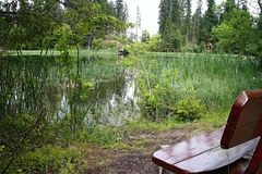 Holzbank für die Entspannung im populären Gebirgssee in Liptov - dem Vrbicke See stockfoto