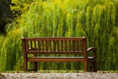 Holzbank im Herbstpark, der Trauerweide gegenüberstellt Lizenzfreie Stockfotografie