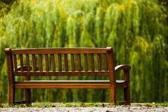 Holzbank im Herbstpark, der Trauerweide gegenüberstellt stockbilder