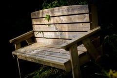 Holzbank im Schatten Stockfotografie
