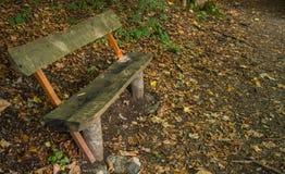 Holzbank im Wald Lizenzfreie Stockfotos