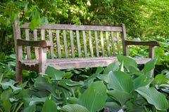 Holzbank umgeben durch Hostas lizenzfreie stockfotografie
