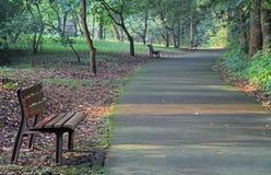 Holzbanken im Park von Hangzhou Stockbilder