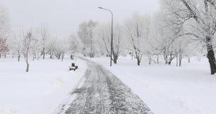 Holzbanken im Schnee stock video
