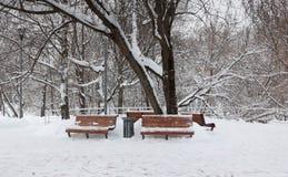 Holzbanken nach Schneesturm Lizenzfreies Stockfoto