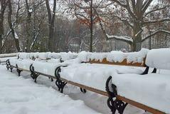 Holzbanken in Rathauspark werden durch frischen weißen Schnee am Wintermorgen nach Schneefällen bedeckt stockfotografie