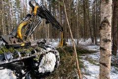holzbearbeitung Beschäftigtes Arbeiten der Blockwinde im Winterwald Lizenzfreie Stockfotografie