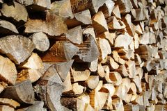 Holzbiege Royalty Free Stock Photography