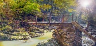 Holzbrücke über dem Fluss Agourou Nationalpark Sochis Lizenzfreie Stockfotos