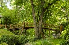 Holzbrücke über einem kleinen Fluss Lizenzfreies Stockfoto