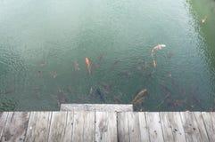 Holzbrücke über Koi Pond Stockfotografie