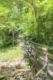 Holzbrücke über Nebenfluss im Forrest lizenzfreie stockbilder