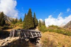 Holzbrücke - Adamello Trento Italien Lizenzfreie Stockbilder