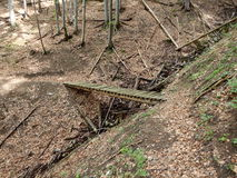 Holzbrücke auf einem Waldweg Lizenzfreie Stockfotos