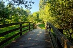 Holzbrücke auf Park Lizenzfreie Stockfotografie