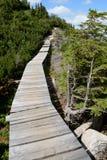 Holzbrücke auf Spur in Karkonosze-Bergen Lizenzfreie Stockfotos