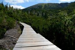 Holzbrücke auf Spur in Karkonosze-Bergen Lizenzfreies Stockfoto