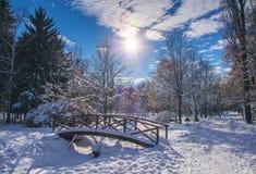 Holzbrücke bedeckt durch frischen Schnee im Winterpark Stockfoto