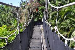Holzbrücke in das wilde Stockfotos