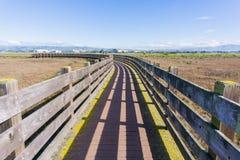 Holzbrücke in Don Edwards-Schutzgebiet, Bereich Fremonts, San Francisco Bay, Kalifornien stockbilder
