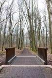 Holzbrücke in einem Wald Stockfotografie