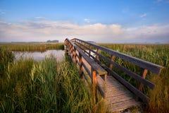 Holzbrücke für Fahrräder über Fluss Stockbilder