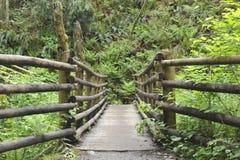 Holzbrücke für Wanderer Lizenzfreie Stockbilder