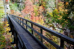Holzbrücke im Herbst Stockbild