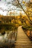 Holzbrücke im Herbst Lizenzfreie Stockbilder