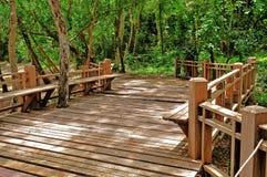 Holzbrücke im Park Erawan, Kanchanaburi Thailand Stockfotografie