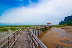 Holzbrücke im See unter blauem Himmel Stockbilder