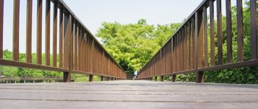 Holzbrücke im thailändischen Gemeinschaftswald in Knall Kachao-Insel, Thailand stockbilder