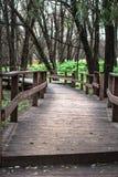 Holzbrücke im Wald Stockbilder