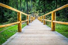 Holzbrücke im Wald Stockfotos
