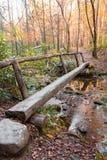 Holzbrücke im Wald Lizenzfreie Stockbilder