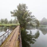 Holzbrücke und Baum Lizenzfreie Stockfotografie
