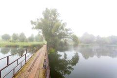 Holzbrücke und Baum Stockfotografie